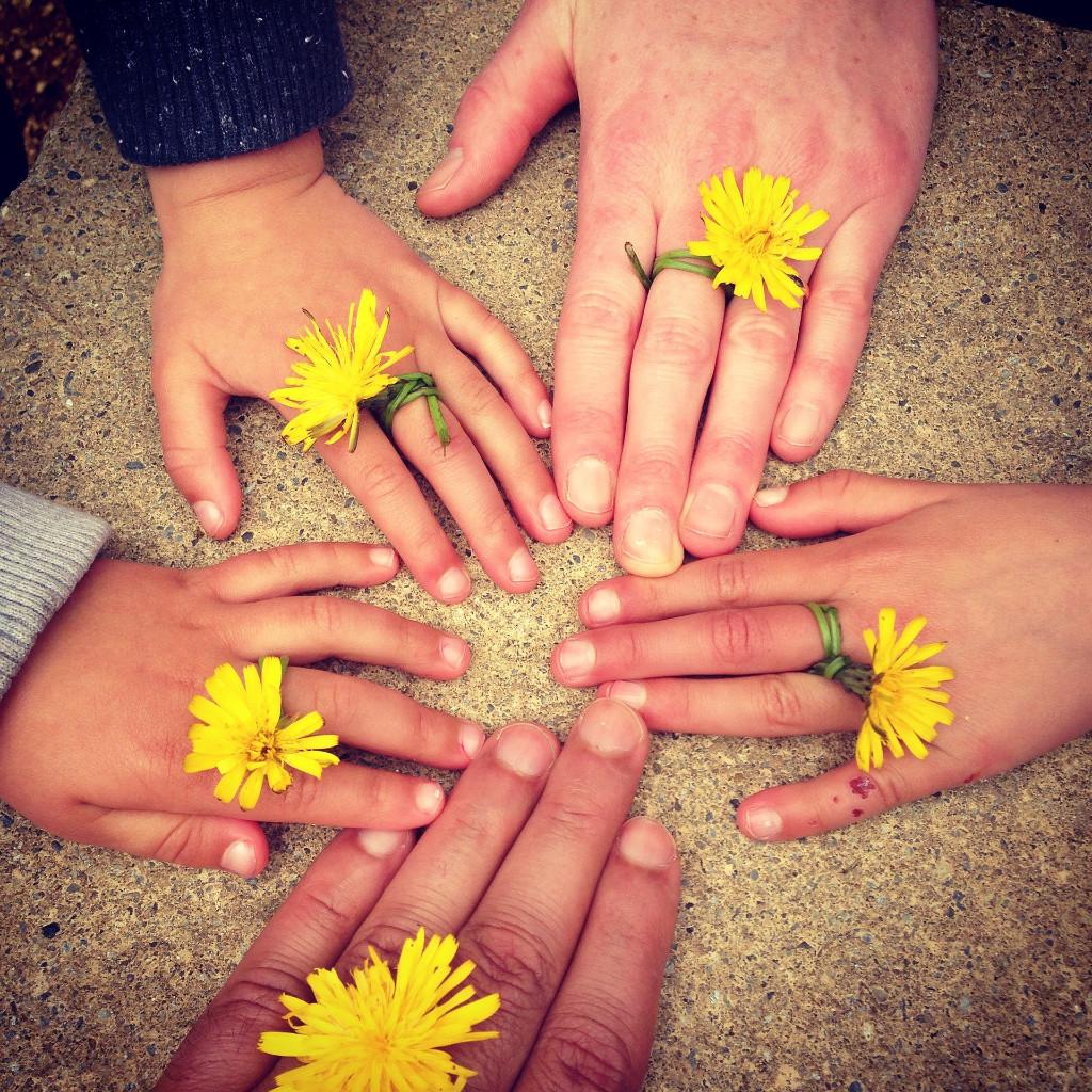family-hand-1636615_1920